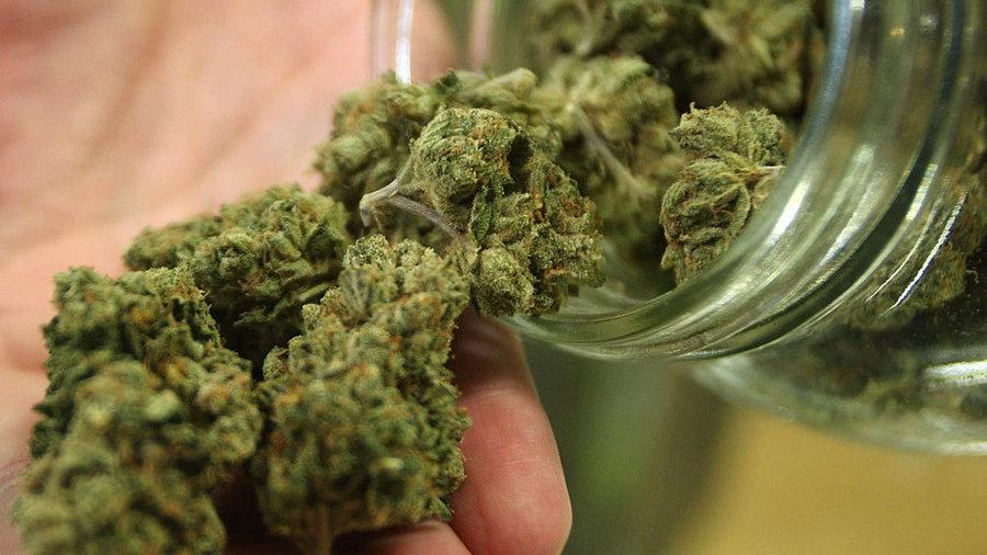 канабис марихуана
